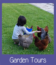 Garden Tours Fort Myers FL