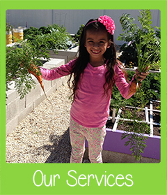 Our Services SWFL Garden Tours